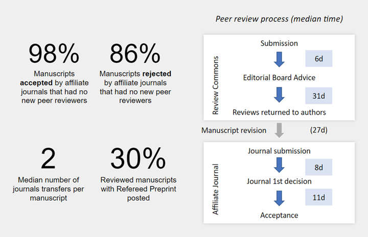 Summary of peer review process times listed in paragraph above